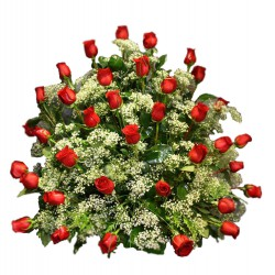 Centro de rosas (CO106)