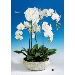 Planta Artificial (PA107)