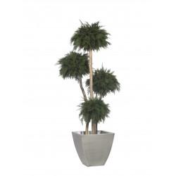Planta Liofilizada (PLO103)