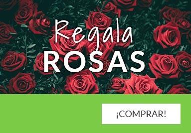 Regala Rosas