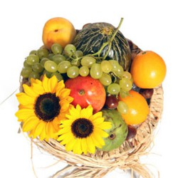 Cesta de frutas campera (CE100)