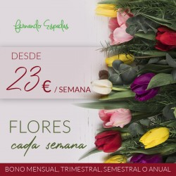 Flores cada semana