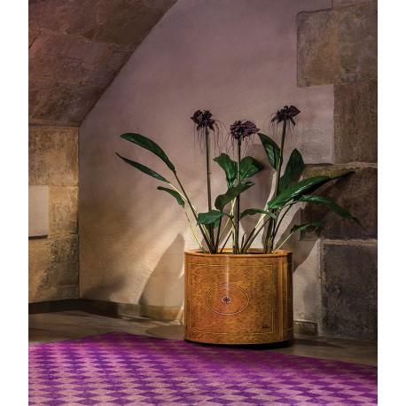 espacios con jardineras273