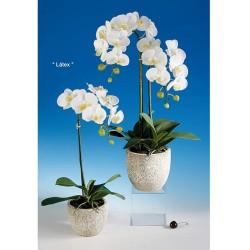 Planta Artificial (PA106)