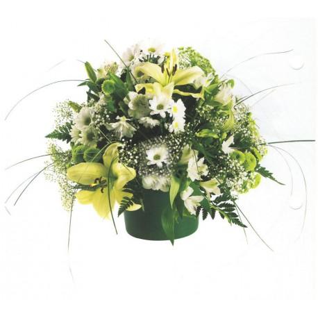 Centro de flores polar (F142)